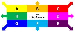 Lotus Blossom 720 x 340