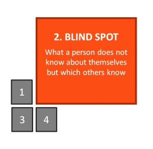 Johari Window: Blind Spot