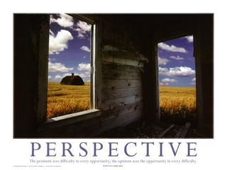 03-PS36-5~Perspective-Posters